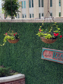 Outdoor UV resistant Boxwood wall in Downtown Fort Worth