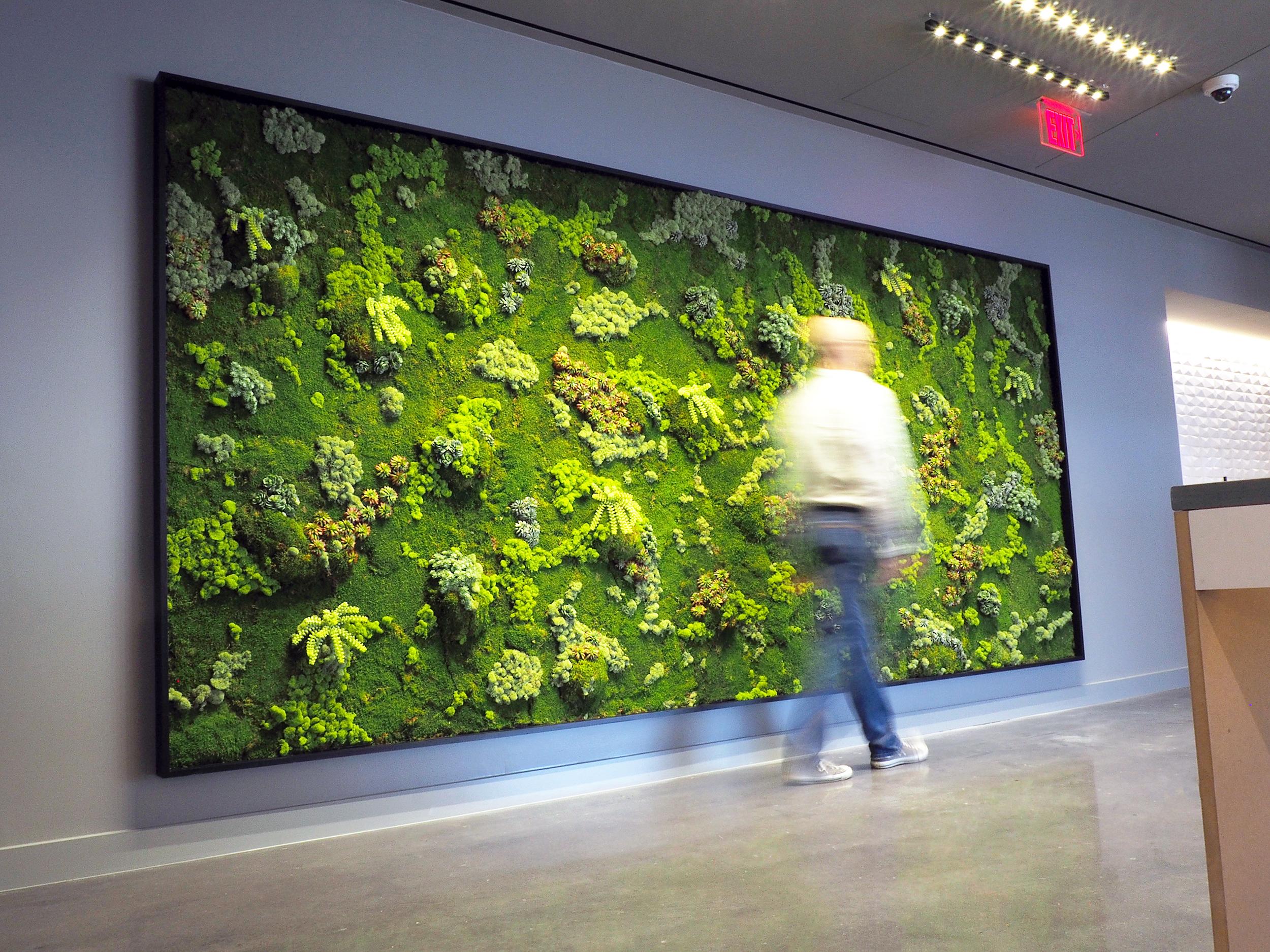"""Framed """"Living"""" Wall"""