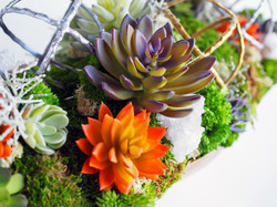 Mixed Succulents and Crystals