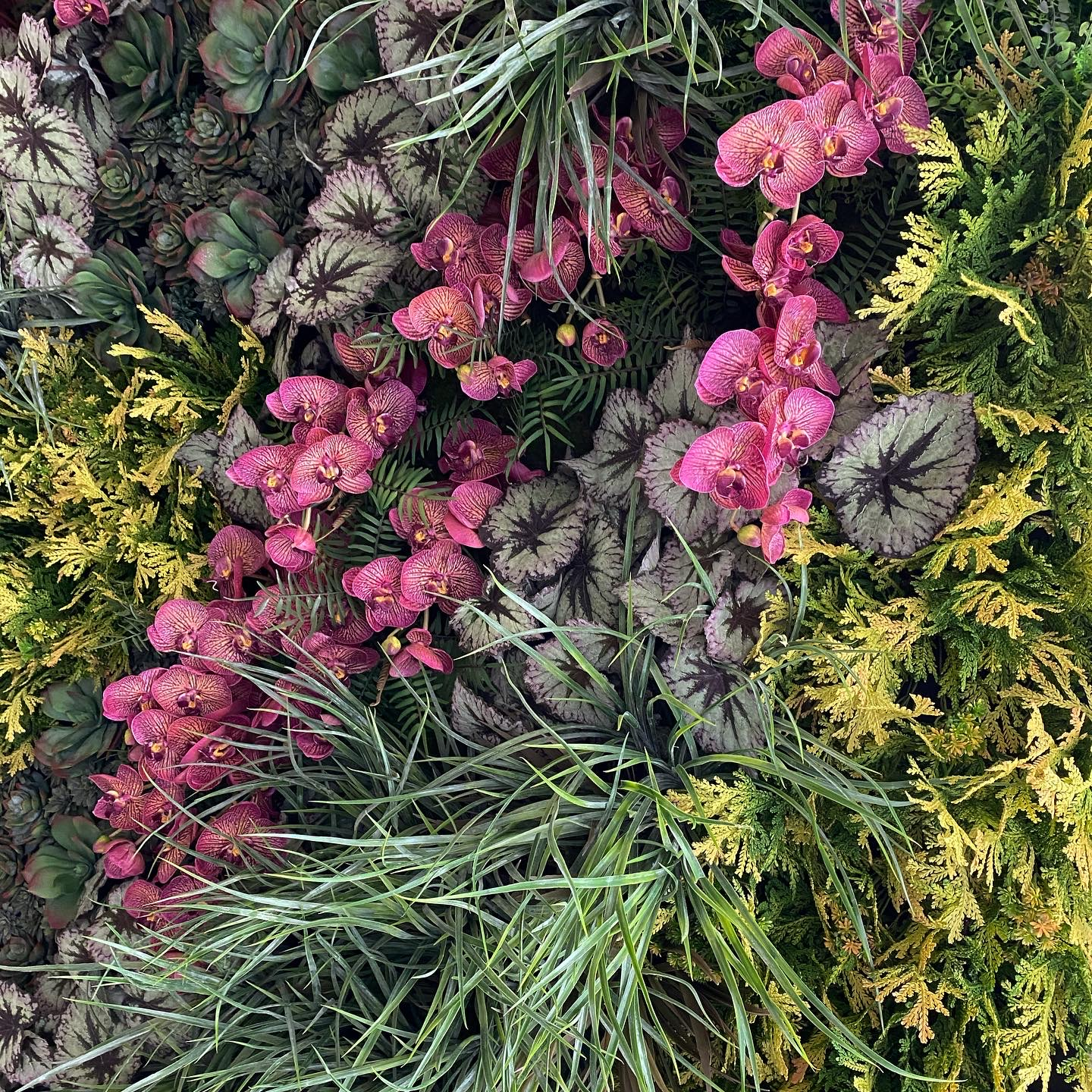 Planted wall detail