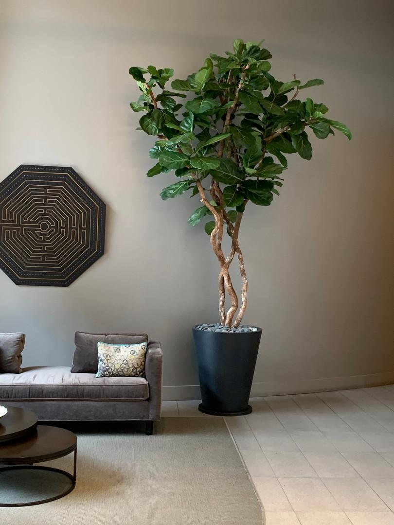 Custom Faux Fiddle Leaf Fig Tree