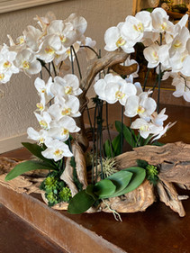 Orchid and natural wood centerpiece