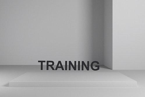 Online Graphic Training