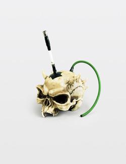 Skull, 2014