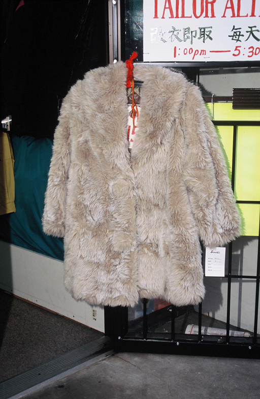 Fur Coat, 2014