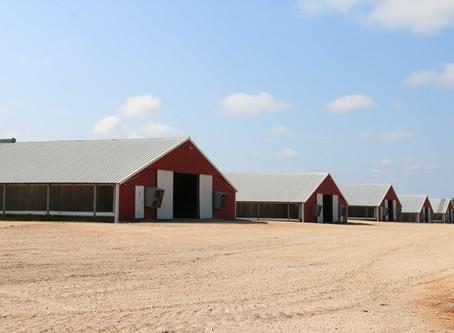 AP&EA Applauds Gov. Ivey's Approval of Alabama Agriculture Stabilization Program