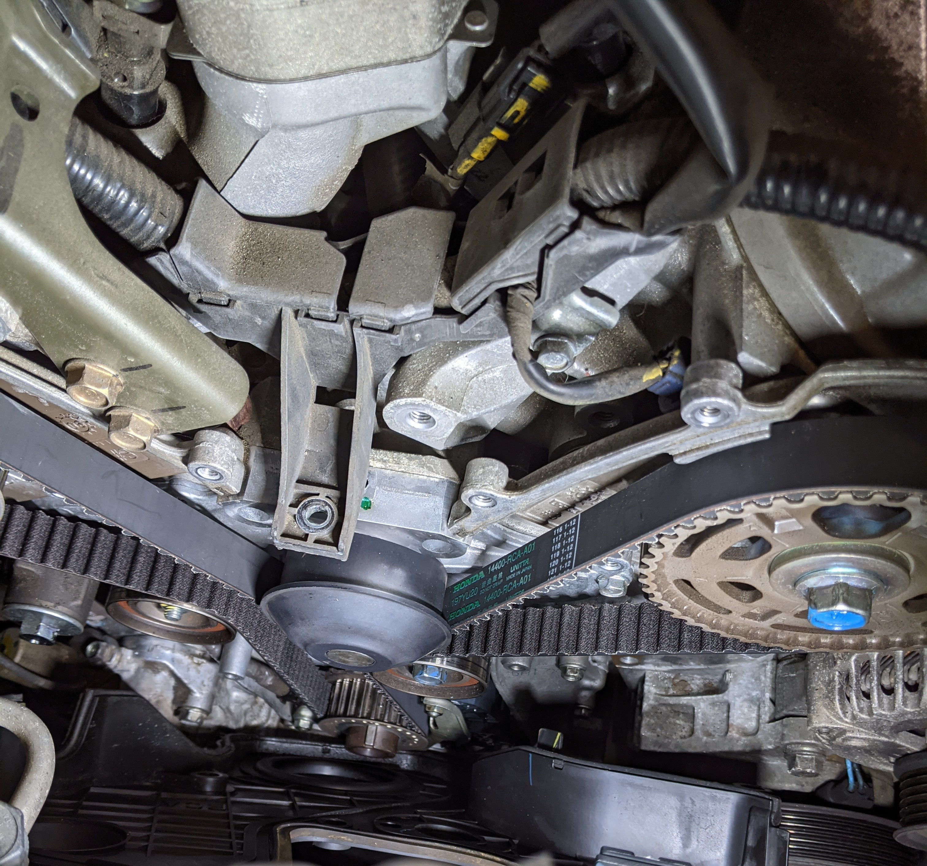 Timing Belt and Water Pump replacement