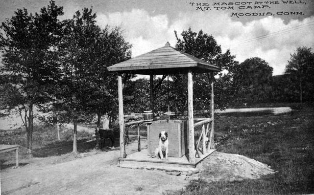 Mt. Tom Mascot 1900s.jpg