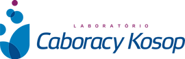 Logo LabCK
