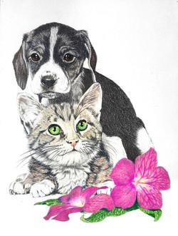 Prismacolor portrait by Tom Wegrzyn