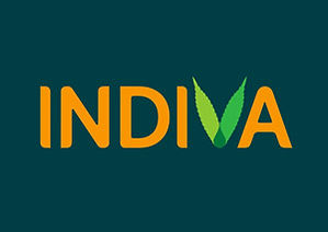 View INDIVA Logo + Brand Design by Tom Wegrzyn