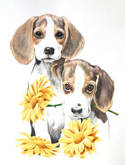 Puppies portrait by Tom Wegrzyn