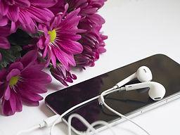 flower-3041518_1920.jpg