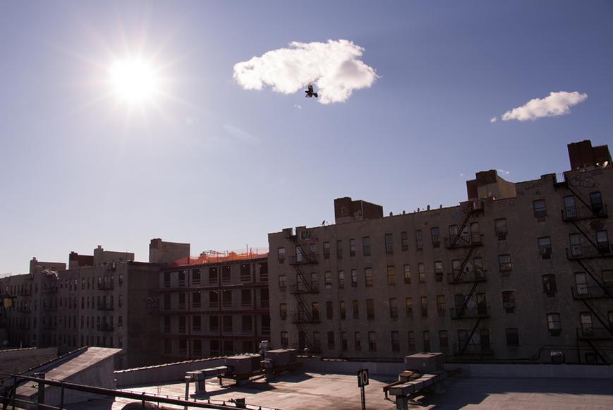 The Bronx, 2015