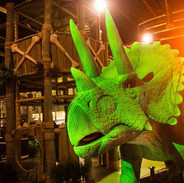 Dinotropolis Adventure Park