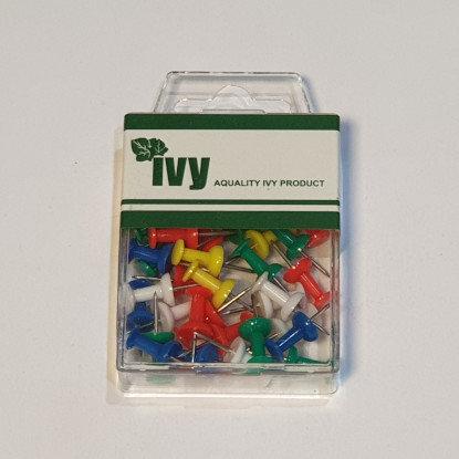 Ivy 40 Push Pins