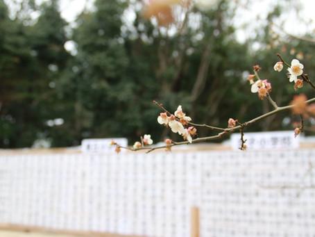 令和3年度有松天満社春季大祭ならびに祈年祭について