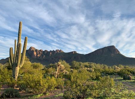 Tucson, not Tuxon, or Tuscon, or Tacson