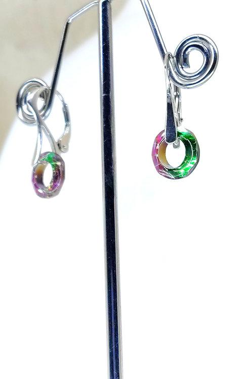 Rainbow hoops earring