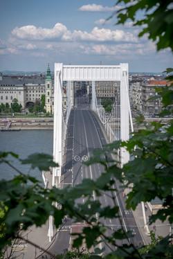 Budapest Elisabeth Bridge