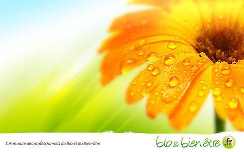 Carole James manétiseuse Energéticienne Aquitaine proche de Bordeaux