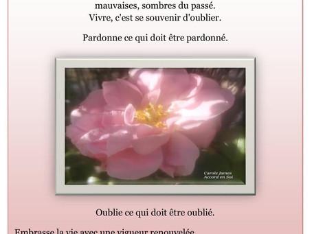 Citation de Amma - Site  ETW France