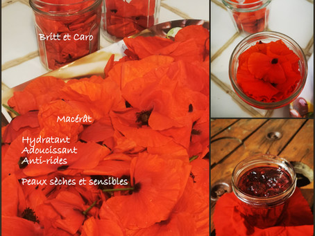 Macérât Huileux Coquelicots DIY