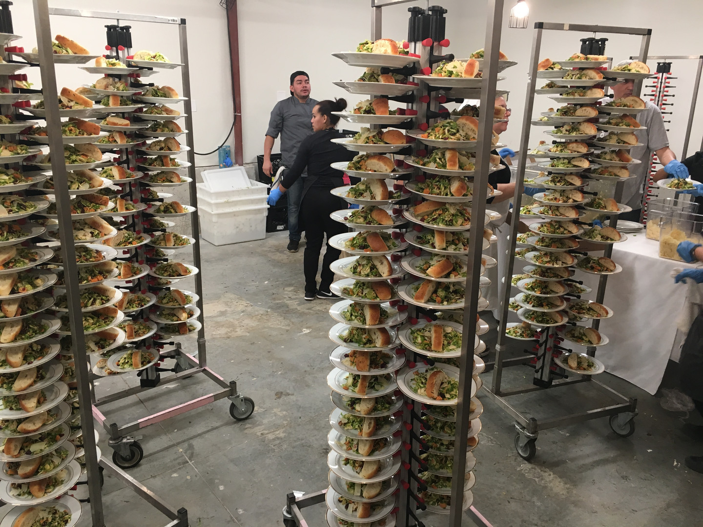 Lots and Lots of plates