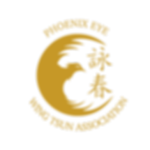 GOLD TRANSPARENT - WING TSUN  ASSOCIATIO