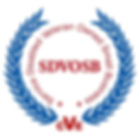 CVE_Certified_logo.jpg