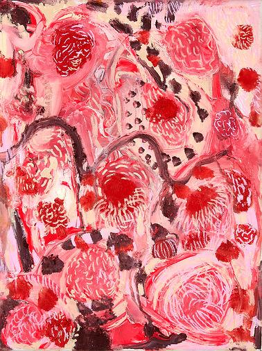 Fallopia tuberose.jpg