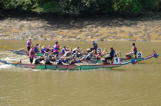 Dragon Boat 2019 (11 of 33).JPG