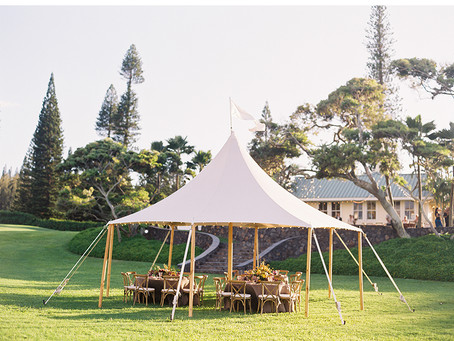 How to keep bugs out Wedding Tents