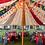 Thumbnail: Tent Drape