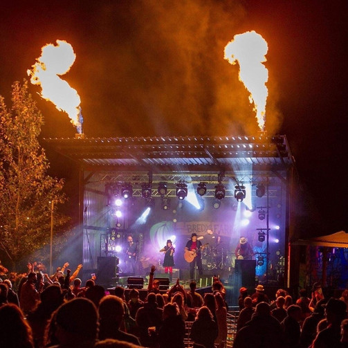 Festival 6.jpeg