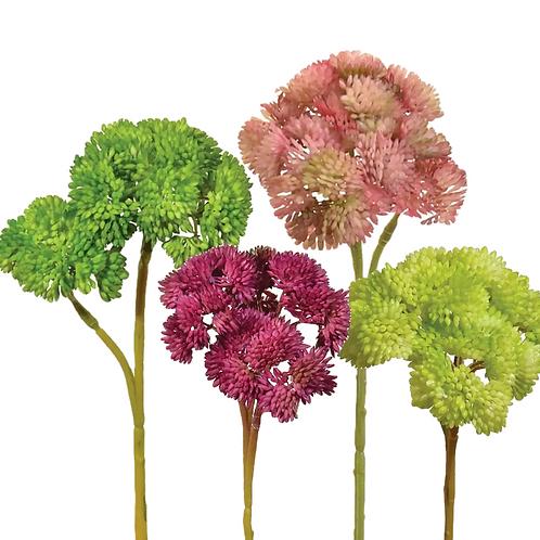 Sedum Flower Stem - 5 colors