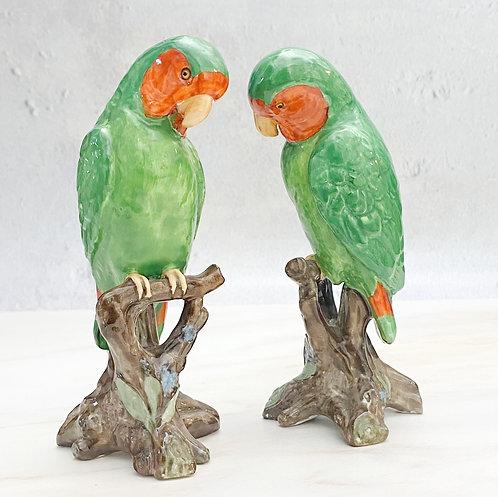 Vintage Spode Parrots