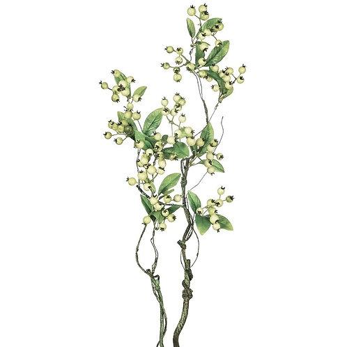 Green Berry Branch