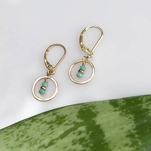 Turquoise Crystal Seedling Earrings