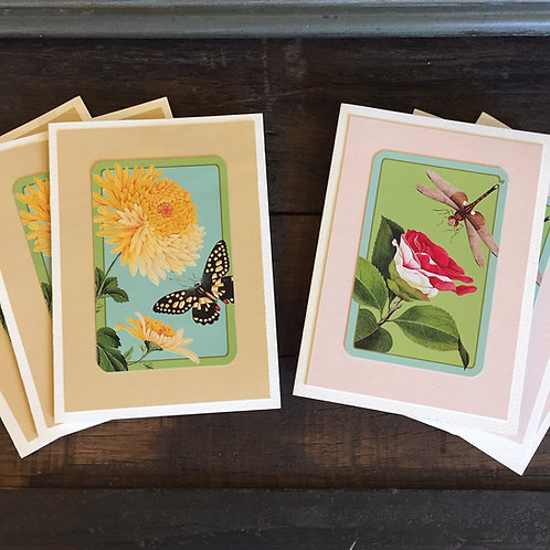 Dragonfly + Butterfly Note Cards Set/6