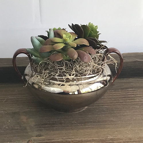 Succulent Arrangement in Lusterware Bowl Large