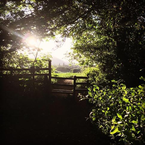 Malvern Path