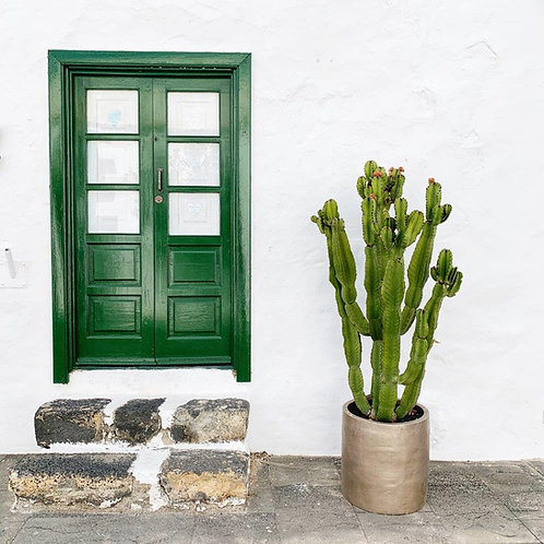 Green Door Blank Card