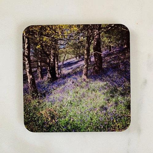 Malvern Bluebells Coaster