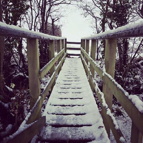 Snowy Bridge Christmas Card