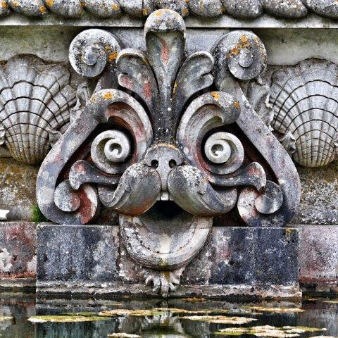 Fountain Face