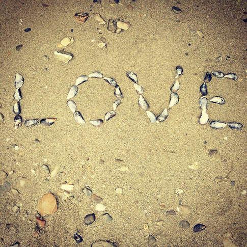 Love shells