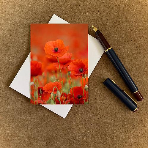 Poppy Blank Mini Photocard