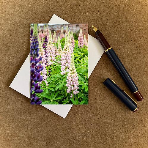 Lupins Blank Mini Photocard