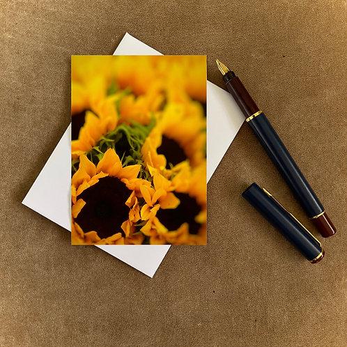 Sunflowers Blank Mini Photocard